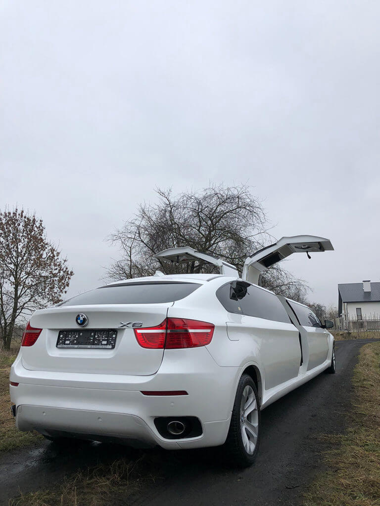 for sale x6 limo